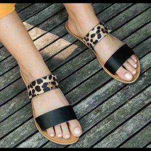 Shoes - 🔥SALE🔥⭐️💕Leopard & Black Banded Flats!